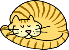 026-cat-sleeping-01-smaller