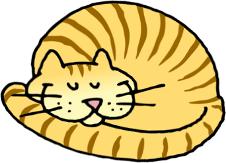 026-cat-sleeping-01-smaller