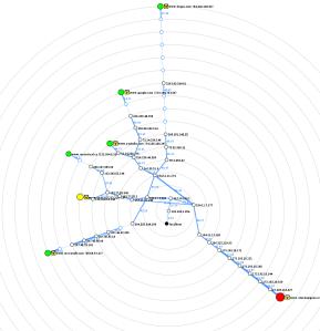 localmap