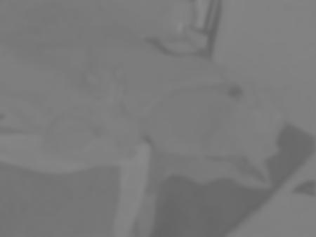 P1131283-blueness-cb470-blurred