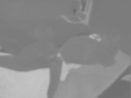P1131283-redness-cr470-blurred